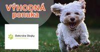 Až 30 dní na vyskúšanie na Elektricke-obojky.sk