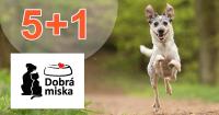 Akcia 5+1 na Dobra-miska.sk